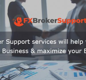 Our forex broker support services will help you to organize your brokerage business