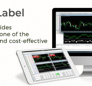 fxwhitelabel.net's-Our-MT5-White-Label-Solutions-that-permits-you-to-arrive-in-Forex-Market-With-end-to-end-Support.