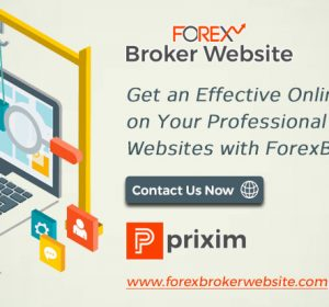 Identify-Your-Brand-in-Online-Forex-Industry-with-Customized-Forex-Website