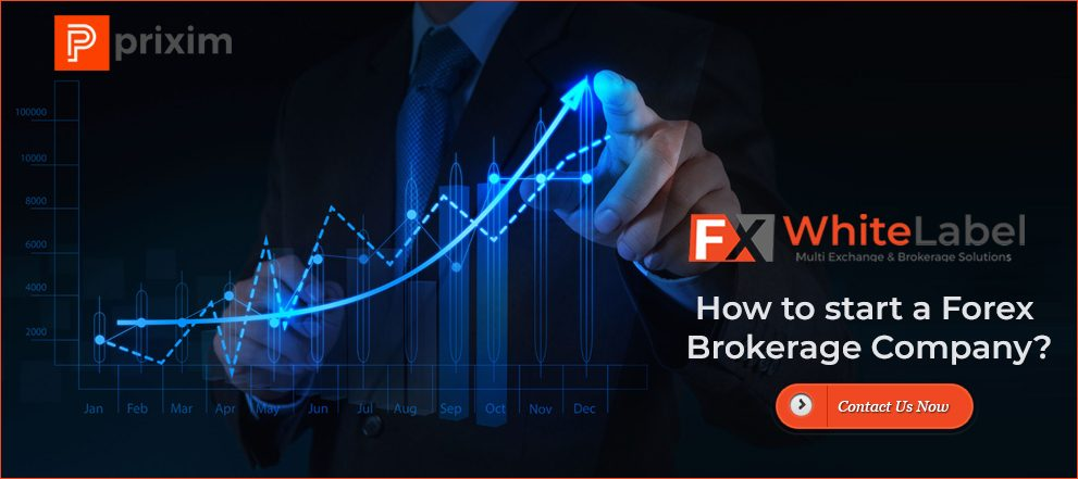 Your Must-Read Guide on How to Start Forex Brokerage Firm - Fintatech