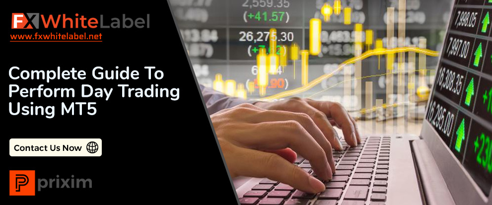Complete Guide to Perform Day Trading Using MT5