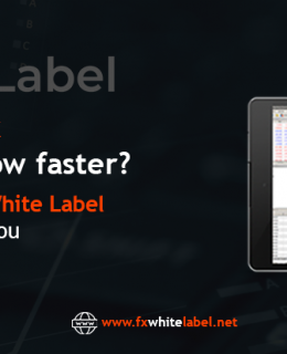 Want Your Forex Brokerage to grow faster? With our MT5 WhiteLabel