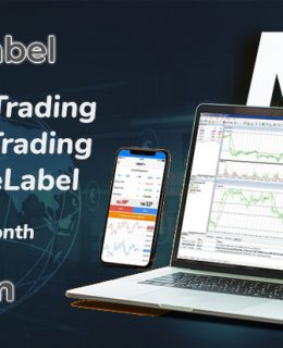 Get Fully Branded MT5 White Label Solutions with fxwhitelabel.net