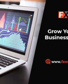 Grow Your Forex Brokerage Business Faster With our MT5 WhiteLabel