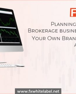 Start Your Brokerage Business with Fxwhitelabel.net at Affordable Price